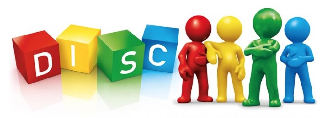 Nieuw: Teambuilding met DISC